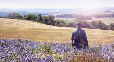 Les bleuets du Chemin des Dames - aisne14-18.com